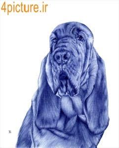 نقاشی از سگ با خودکار