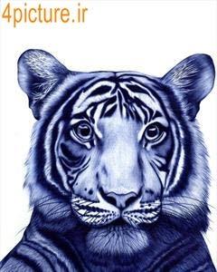 نقاشی از ببر